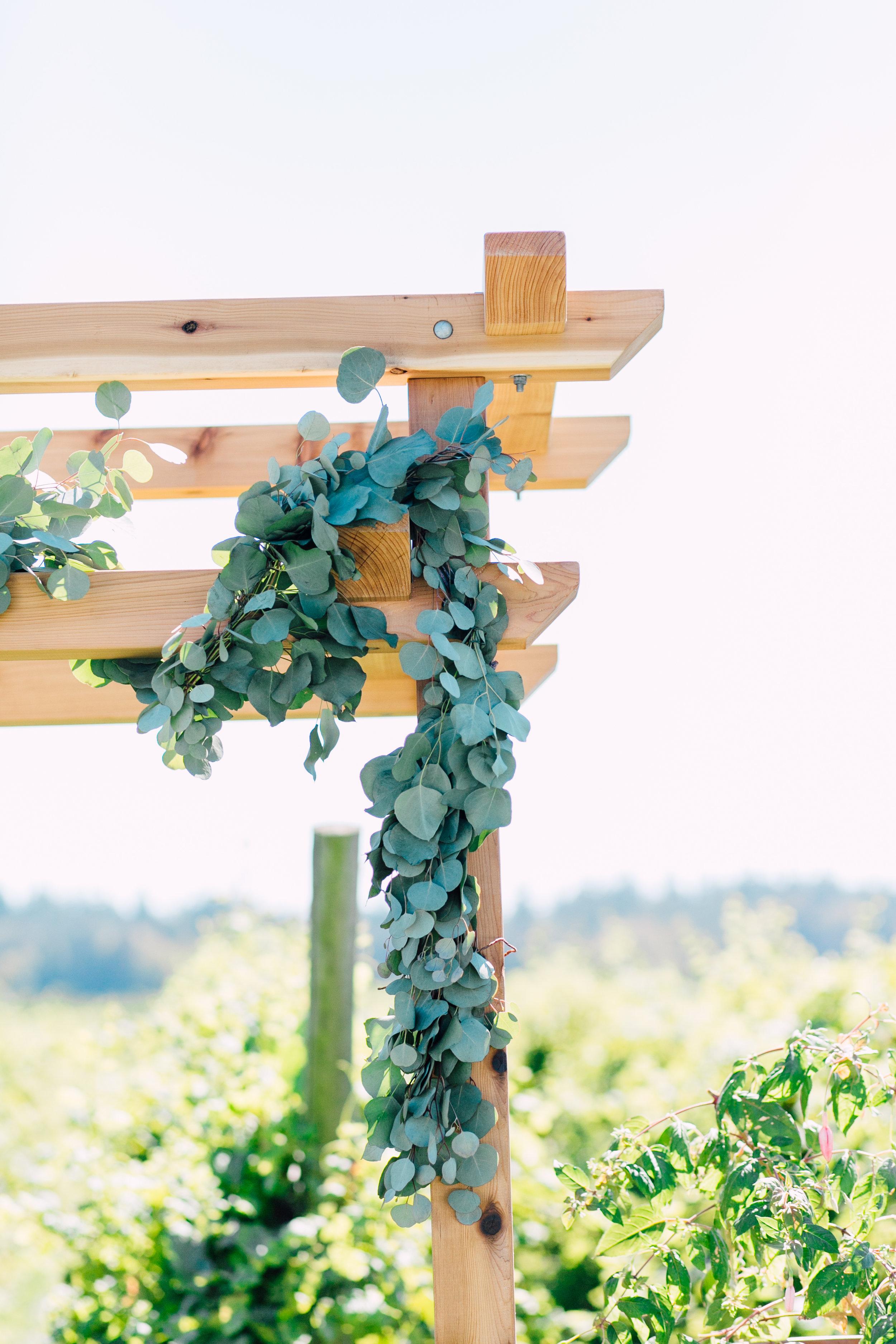 samson-winery-wedding-katheryn-moran-jillmike-359.jpg