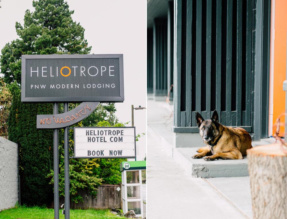 001-bellingham-heliotrope-hotel-airbnb-katheryn-moran-photography-bellingham-photographer.jpg