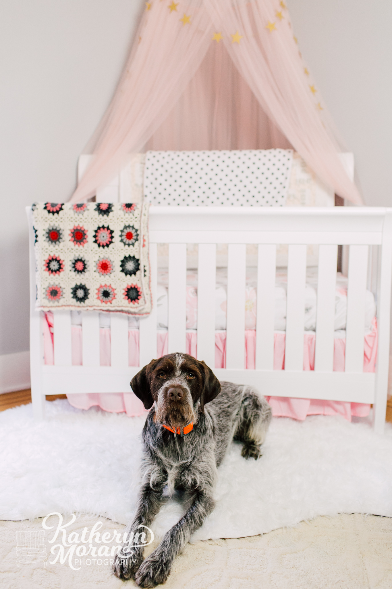seattle-newborn-photographer-katheryn-moran-avery-malaspino-4-2.jpg