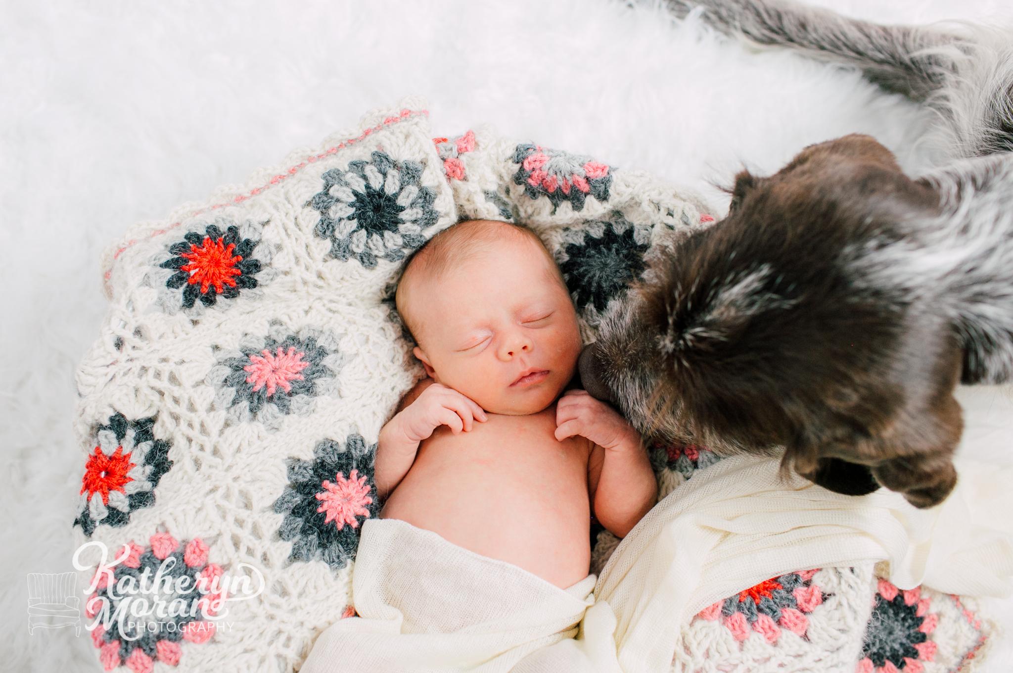 seattle-newborn-photographer-katheryn-moran-avery-malaspino-4.jpg