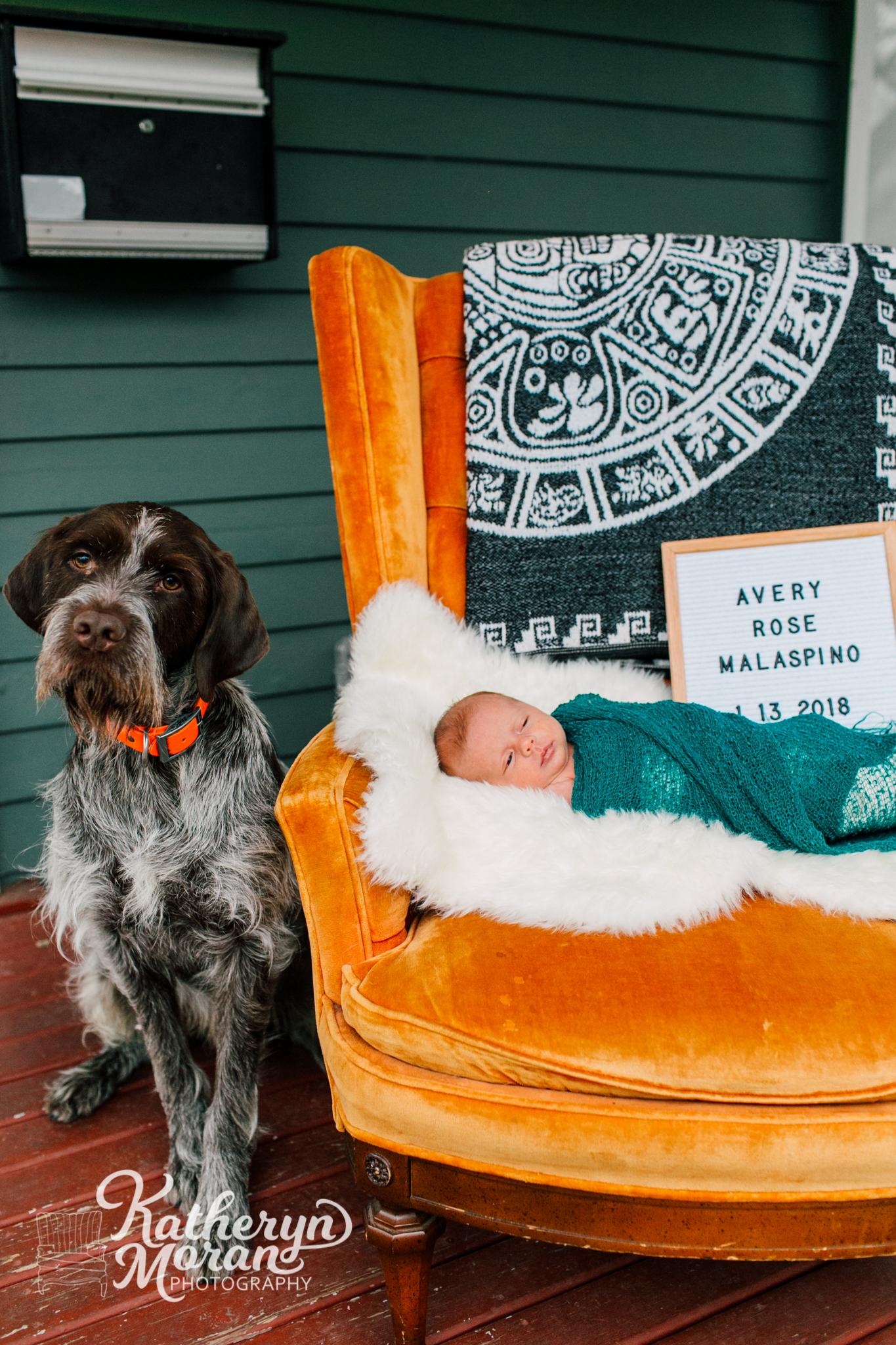 seattle-newborn-photographer-katheryn-moran-avery-malaspino-7.jpg