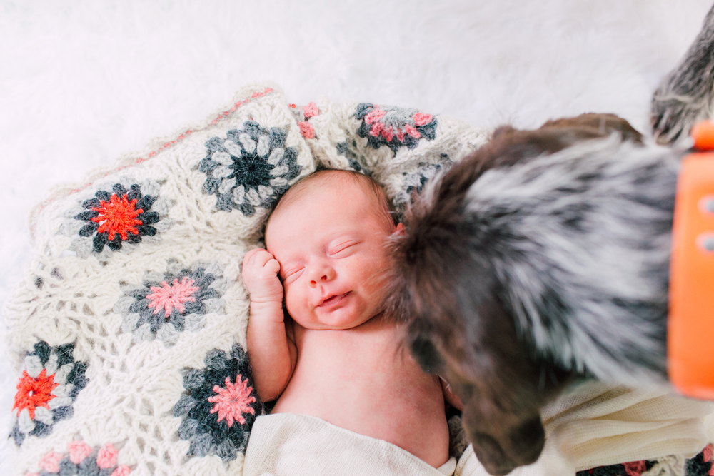 012-seattle-newborn-photographer-katheryn-moran-baby-avery.jpg
