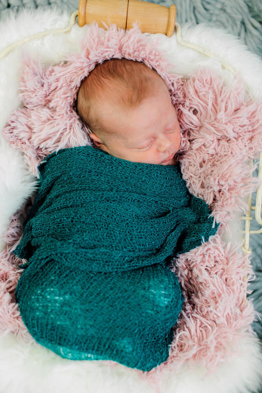 014-seattle-newborn-photographer-katheryn-moran-baby-avery.jpg