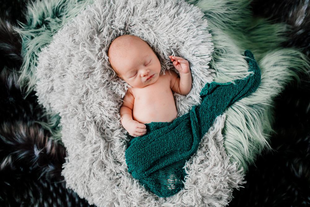 002-bellingham-newborn-photographer-katheryn-moran-baby-harrison-2017.jpg