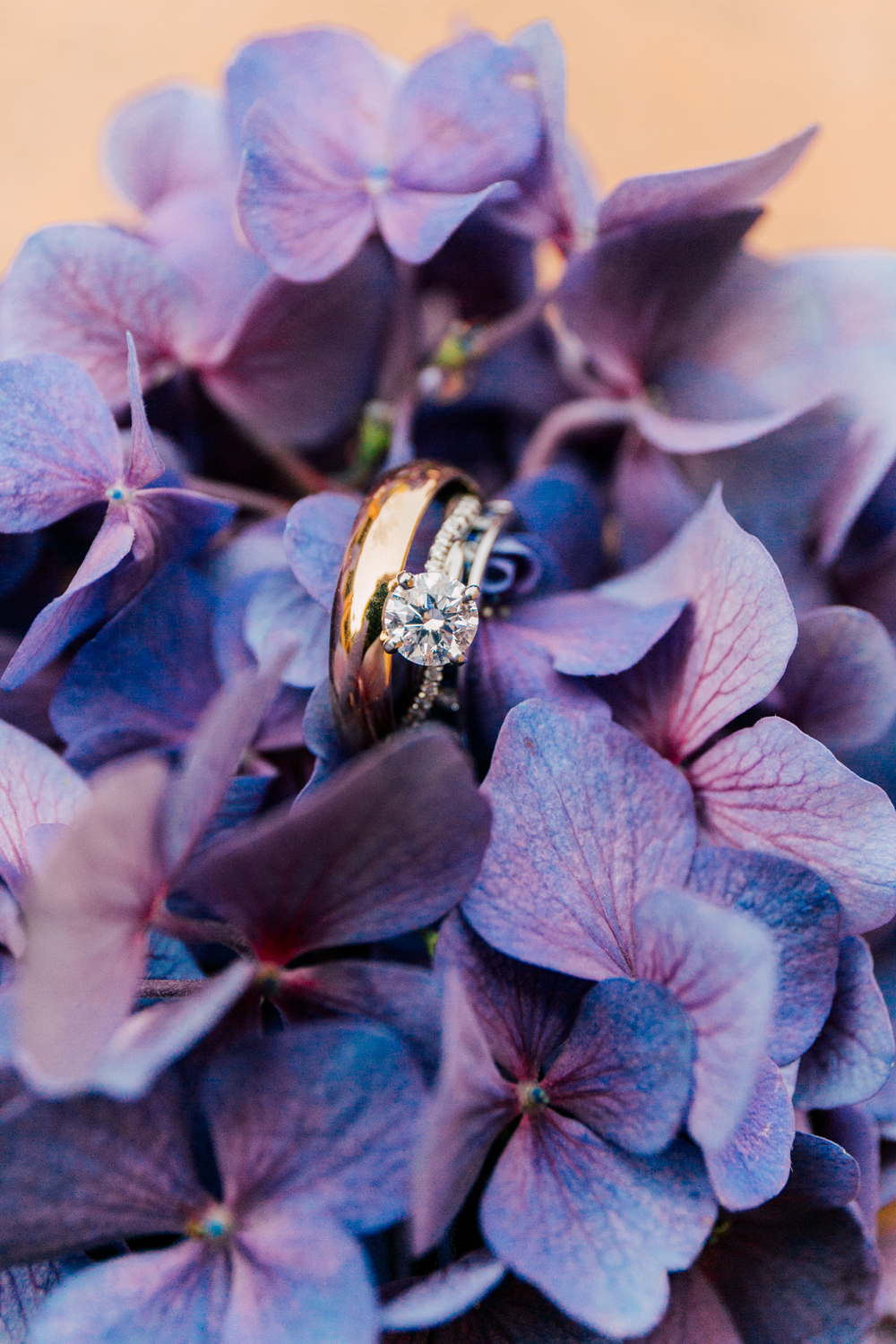 Bellingham Engagement Photographer Katheryn Moran Engagement Ring