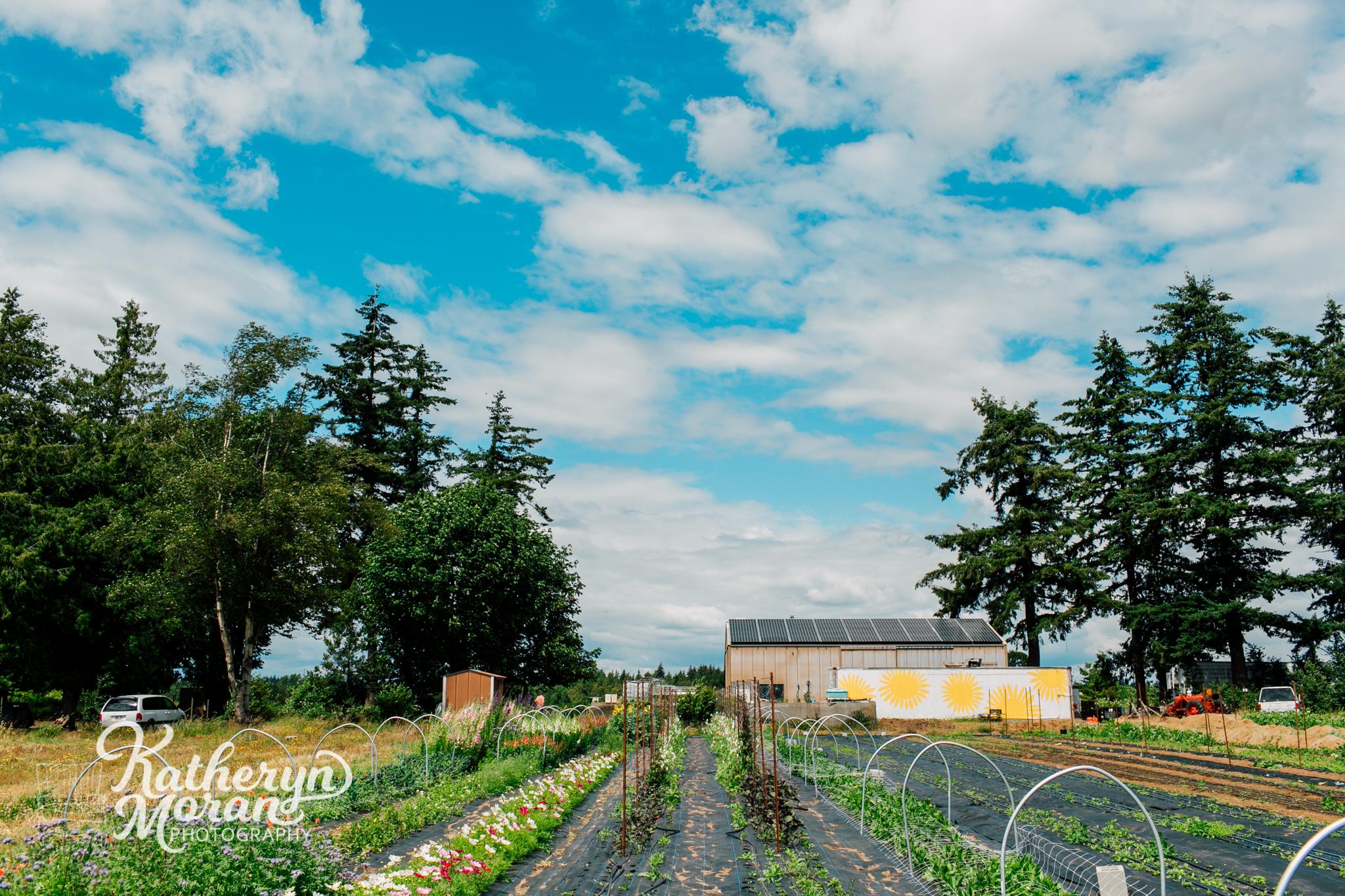 Bellingham business Photographer Triple Wren Farms