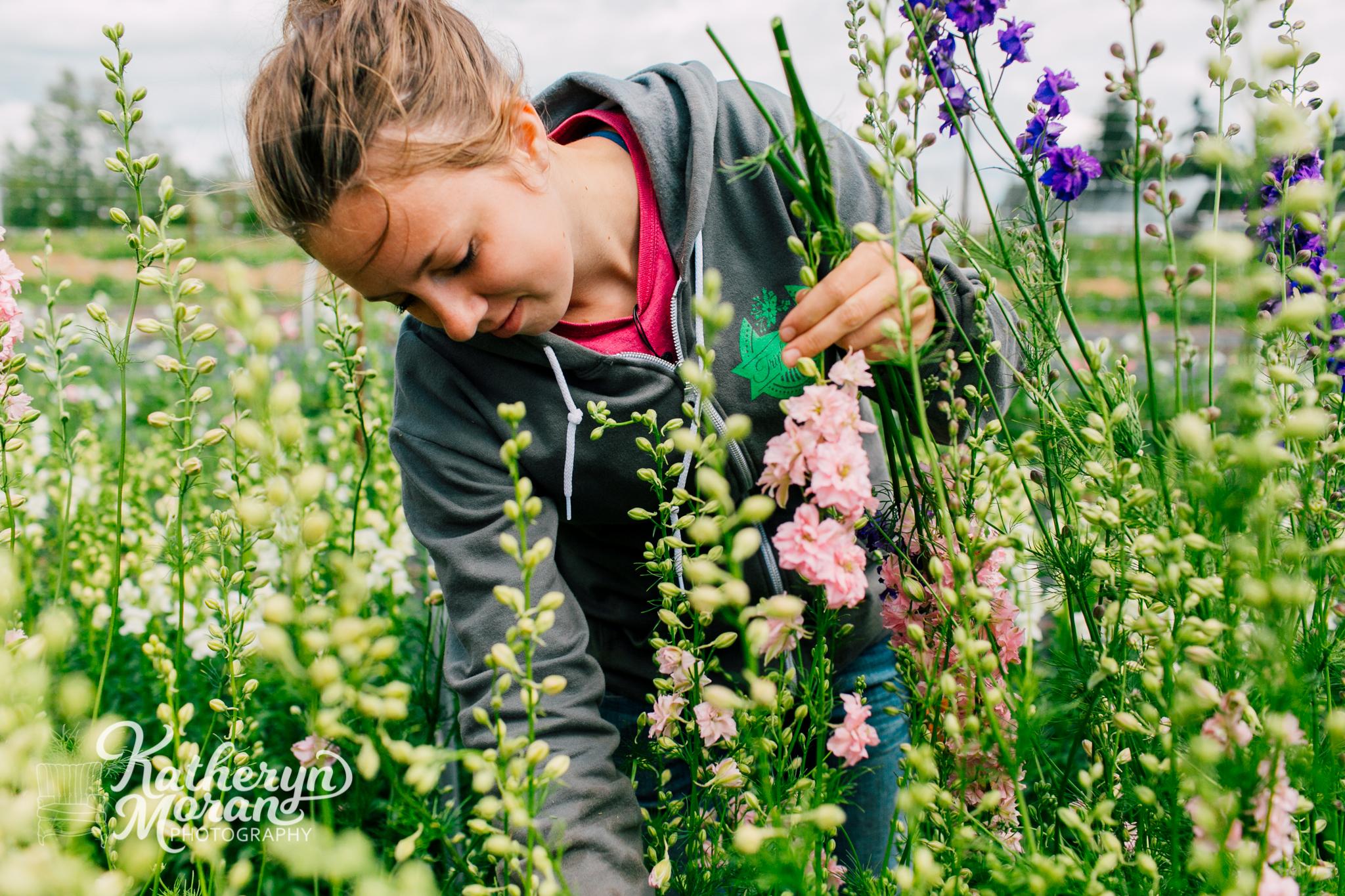 bellingham-photographer-triple-wren-farms-katheryn-moran-photography-summer-2018-460.jpg