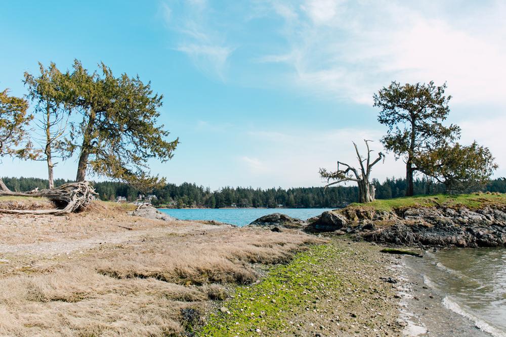 029-airbnb-photographer-roche-harbor-heron-house-katheryn-moran-2019.jpg
