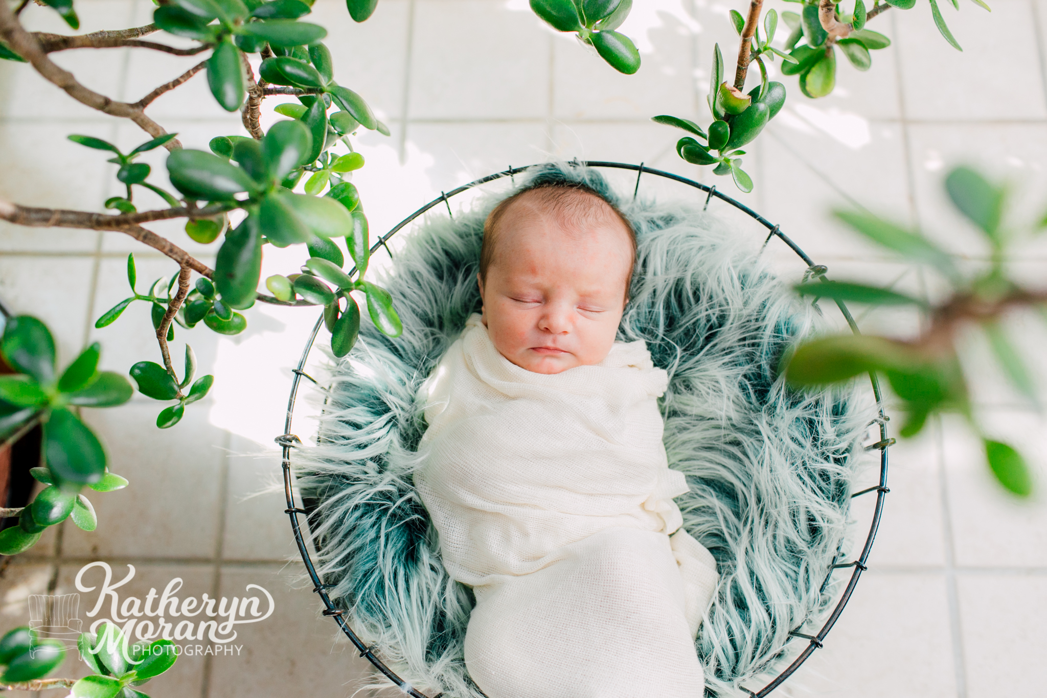 Bellingham Newborn Lifestyle Photographer, Katheryn Moran, Baby Photographer, Bellingham Photographer