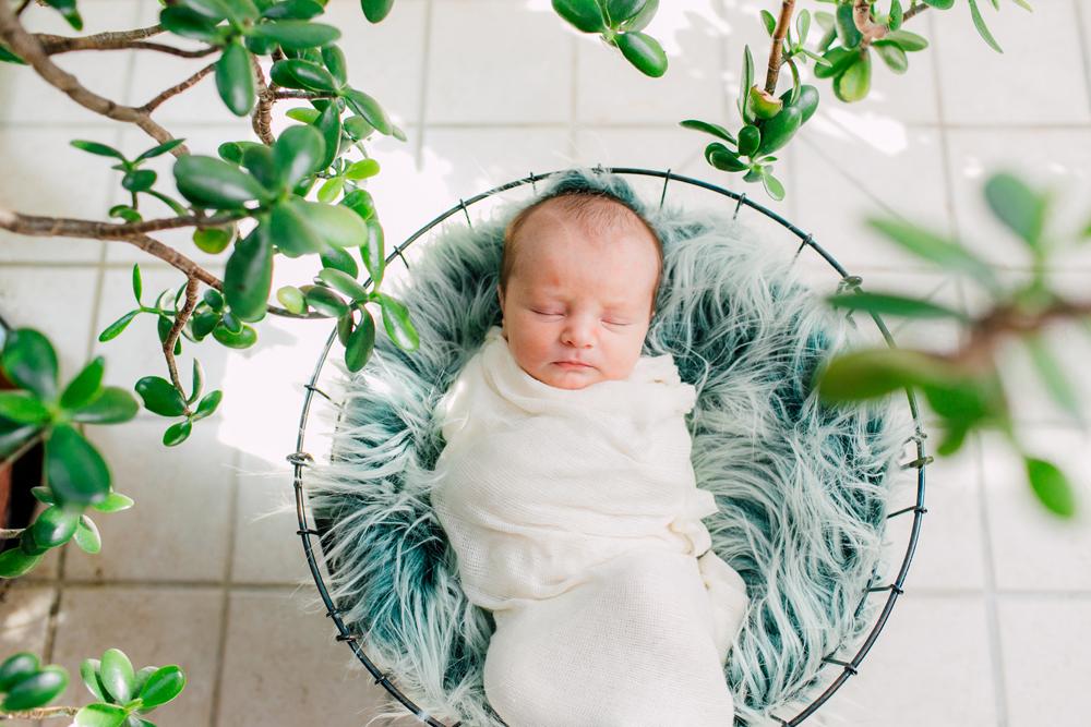 Bellingham Newborn Photographer Katheryn Moran Asher