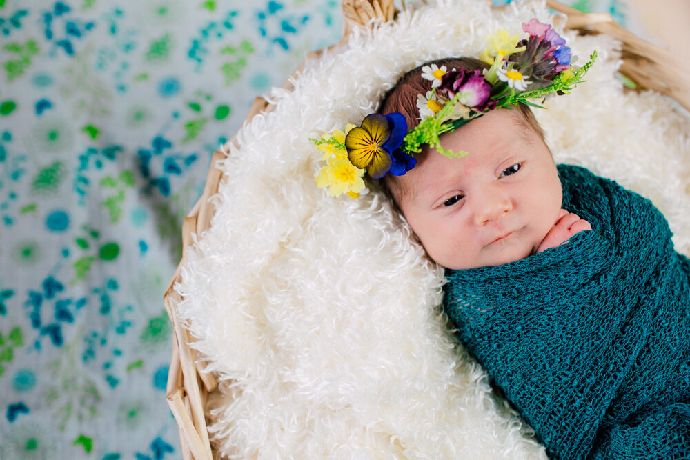Bellingham Newborn Photographer Katheryn Moran Lifestyle Newborn Session