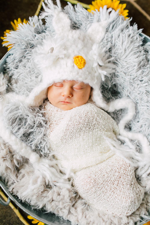 012-bellingham-newborn-photographer-katheryn-moran-baby-arayah-2018.jpg