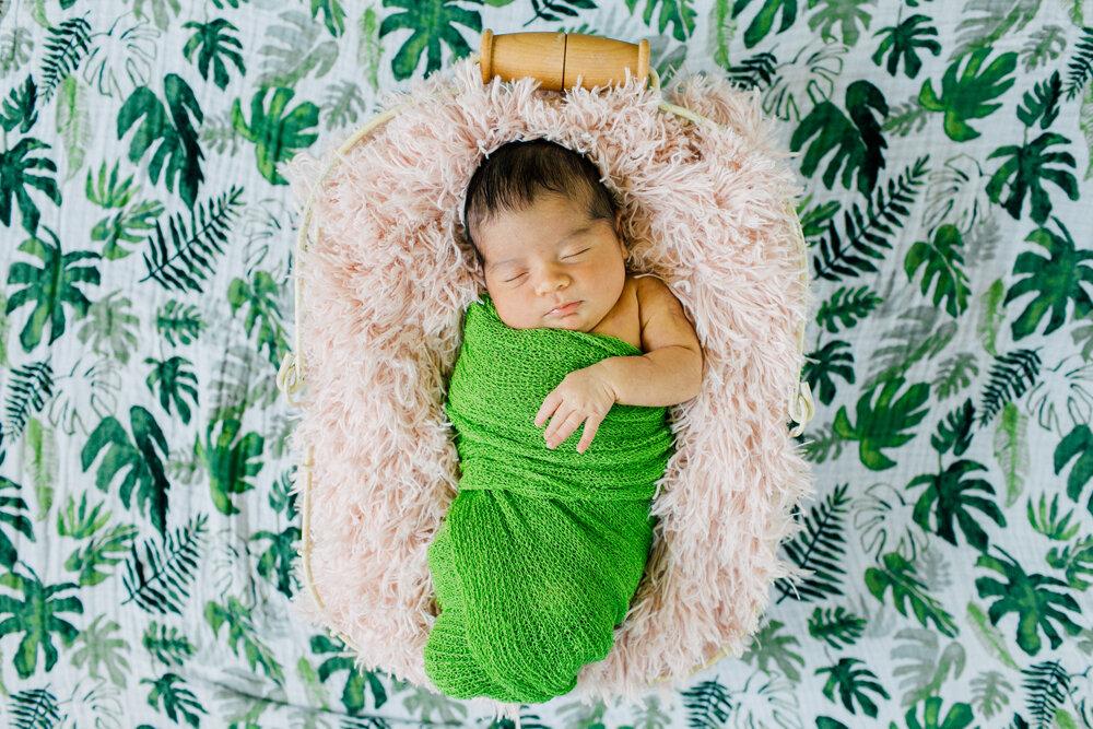 Bellingham Newborn Photographer Katheryn Moran Home Studio Session