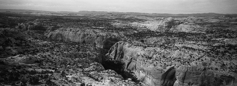 SouthwestFamilyRoadtripOnFilm_8_2014_by_TheImageIsFound_0042.jpg