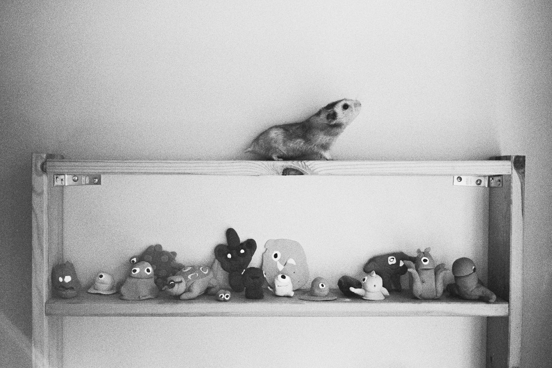 ^ Harriet the super hamster.