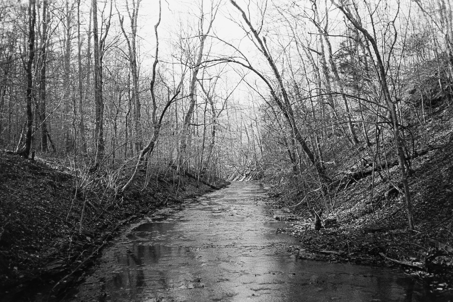 ^ A chill afternoon spent on the creek at Beaman Park.