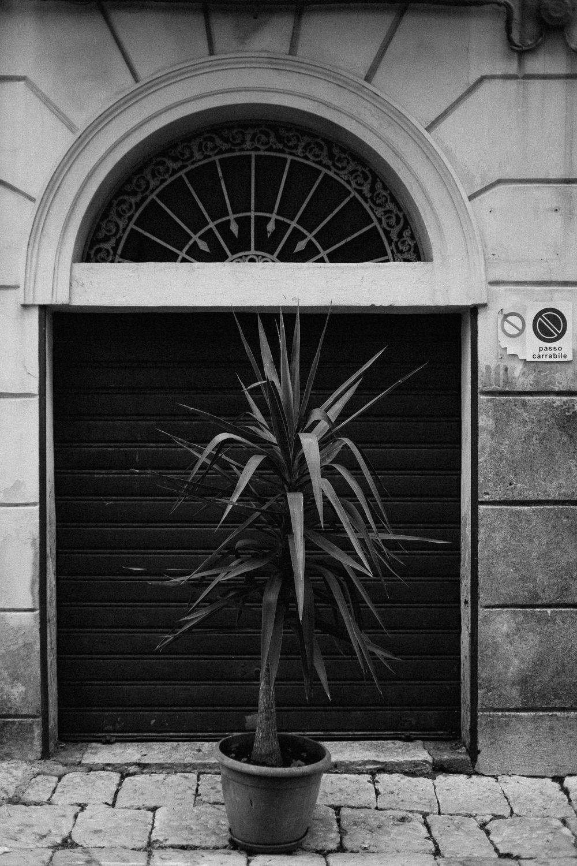 9.2018_Italy_0393.jpg