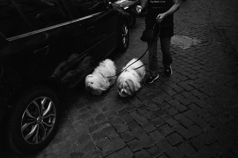 9.2018_Italy_0762.jpg