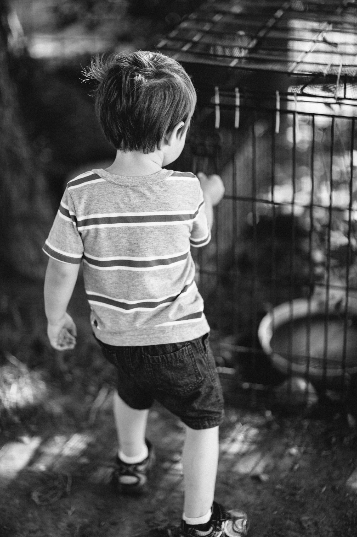 Messer 4th of July - Neal Dieker Photography-2.jpg