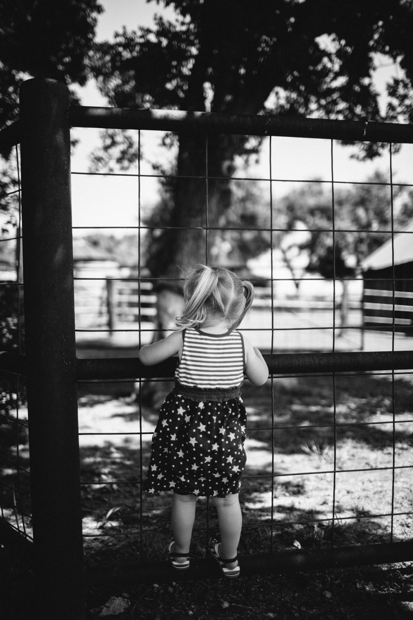 Messer 4th of July - Neal Dieker Photography-35.jpg