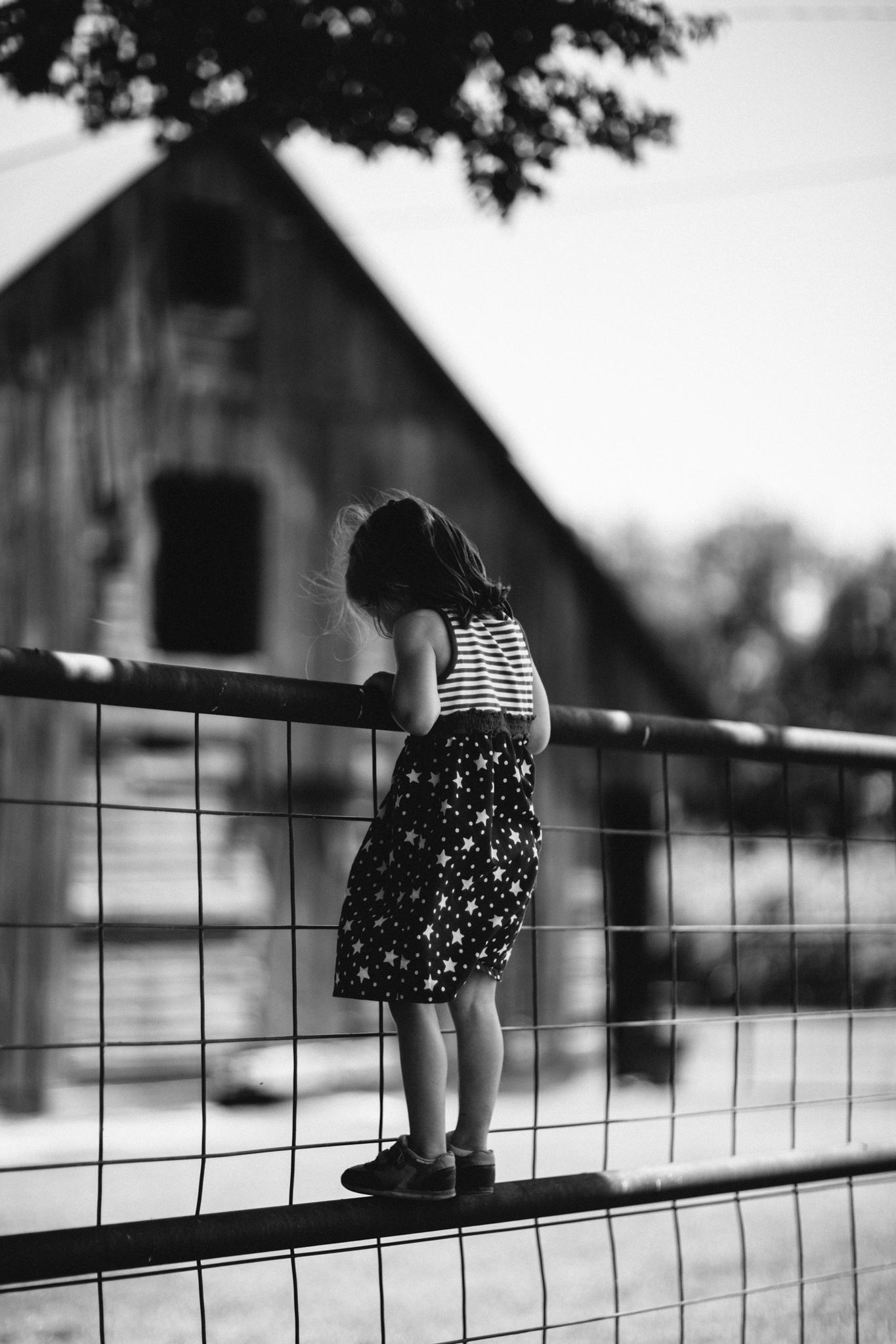 Messer 4th of July - Neal Dieker Photography-37.jpg