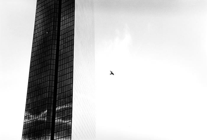 65_by_lacontagiosa.jpg