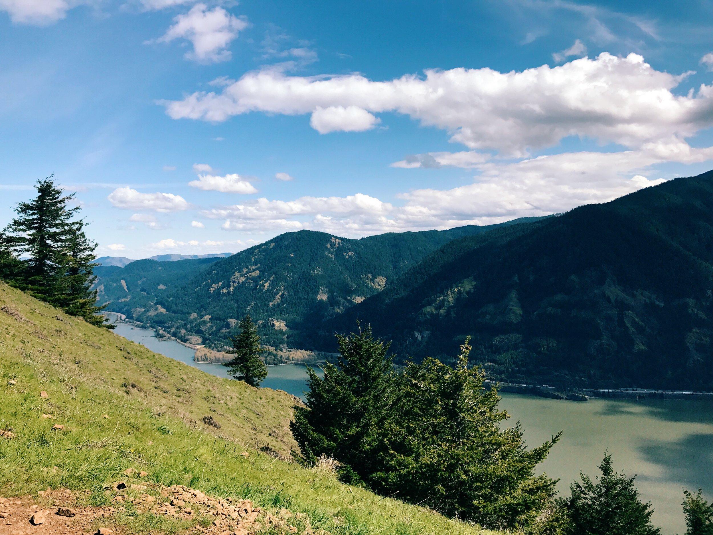 Hike up Dog Mountain