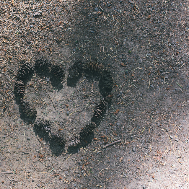 Left some love for other hikers.
