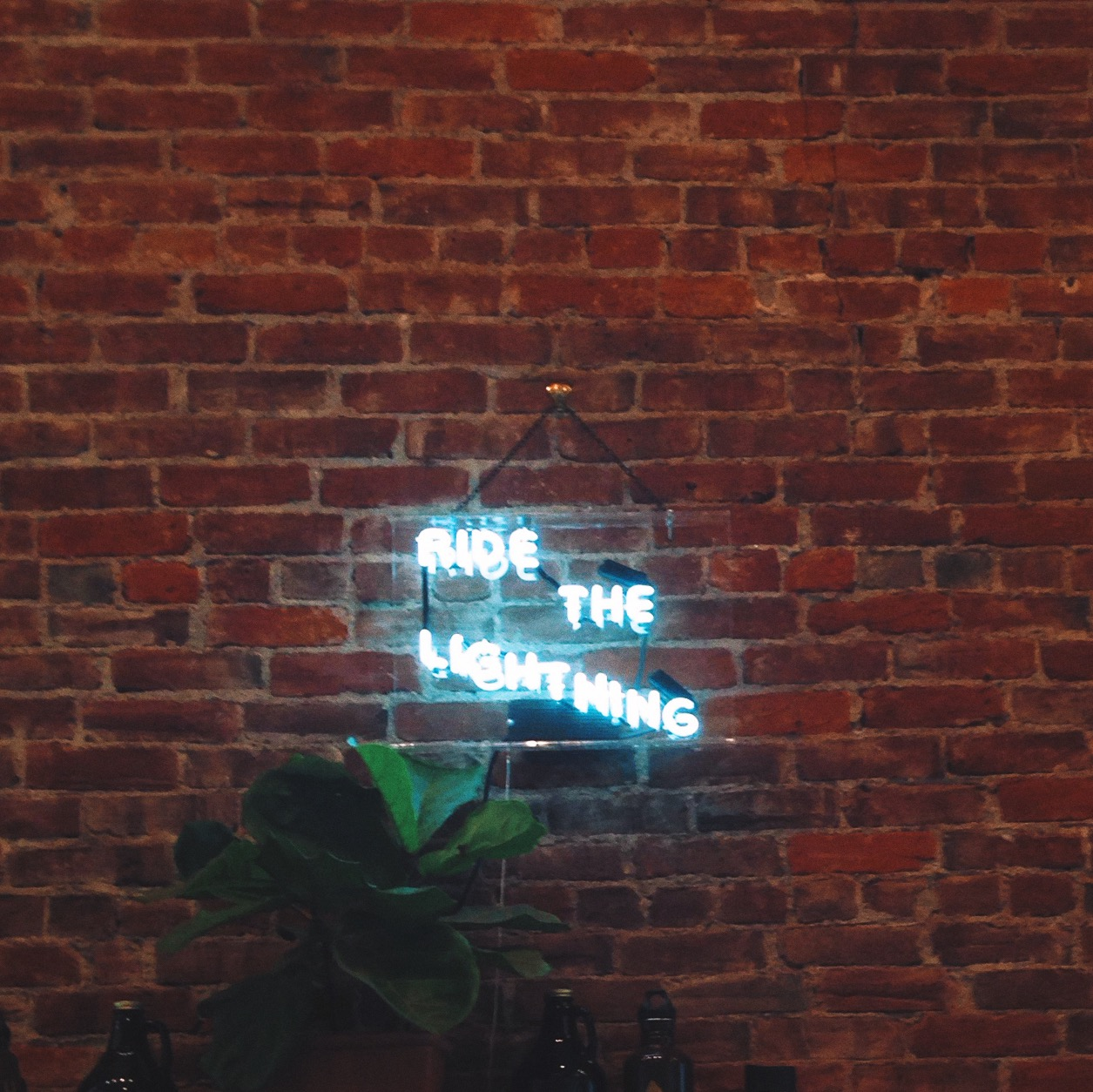 Neon sign at Stumptown