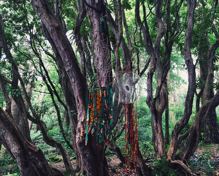 Dreamcatchers in the woods