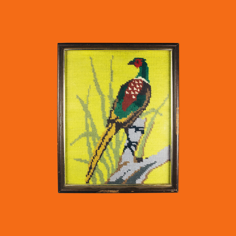 Cross stitched Pheasant