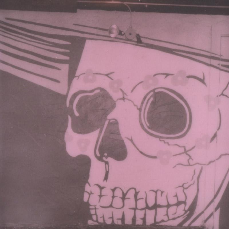 Polaroid | Skull Street Art | Austin, TX | Julia Walck