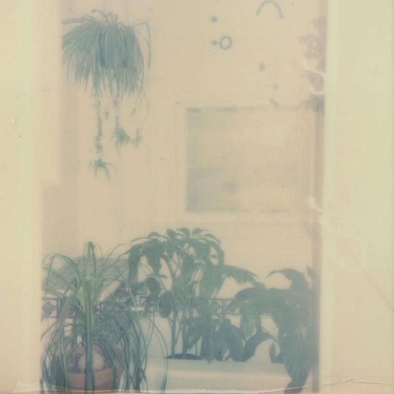 Polaroid | Passport Vintage | Austin, TX | Julia Walck