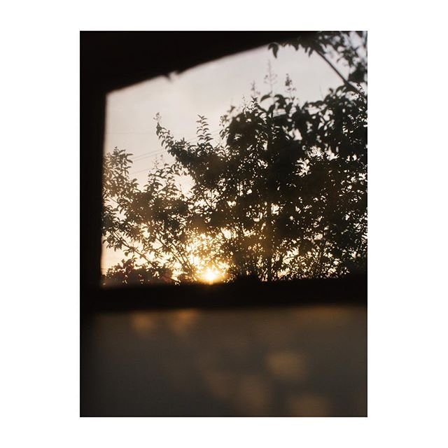 ✨ summer nights, waning fast          #vsco #vscocam #summernights #summerlight #backyardevenings