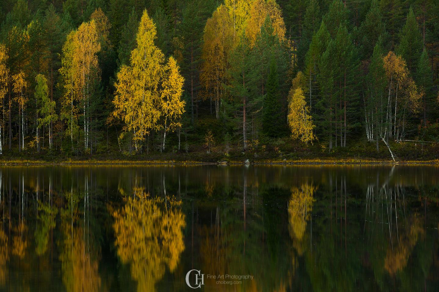 oksne-sunrise-fall.jpg