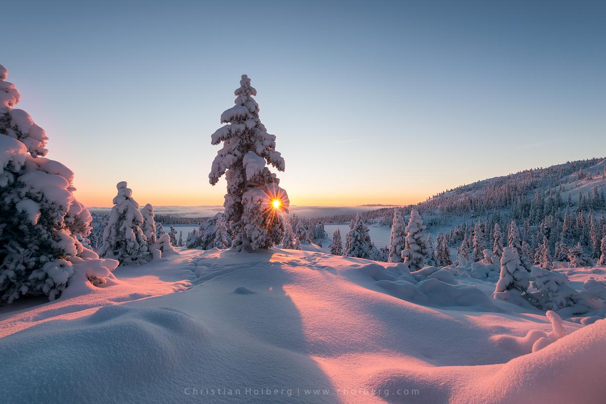 knuten-sunstar-sunrise.jpg