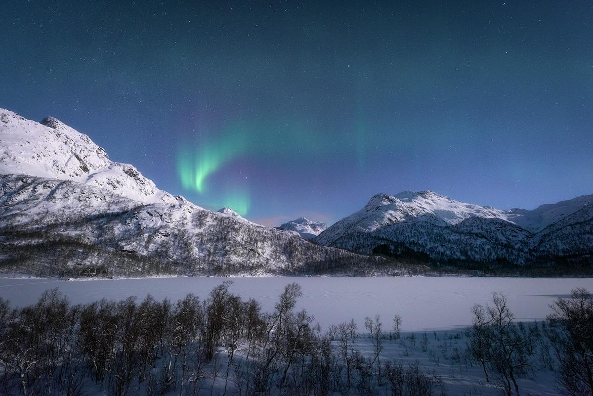lofoten-lights-winter.jpg