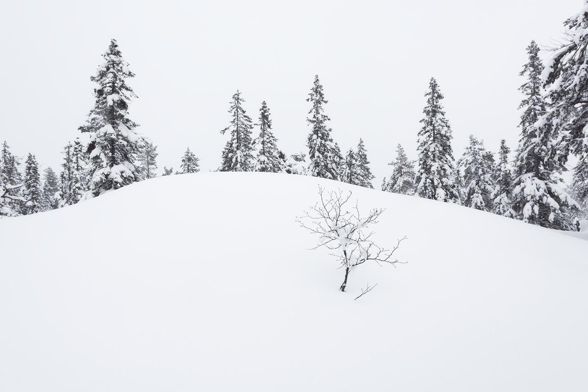 Blefjell-winter-snow.jpg