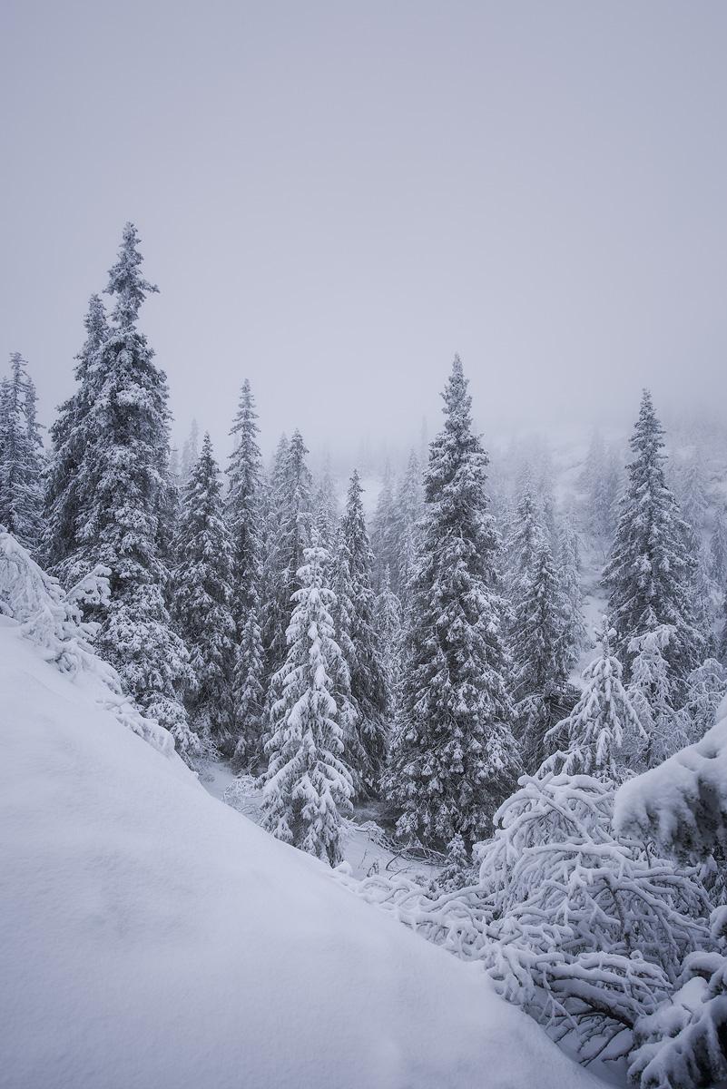 Kongsberg-winter-whiteout.jpg