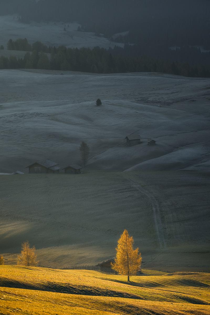 Alpe-de-Siusi-Zoom-IV.jpg
