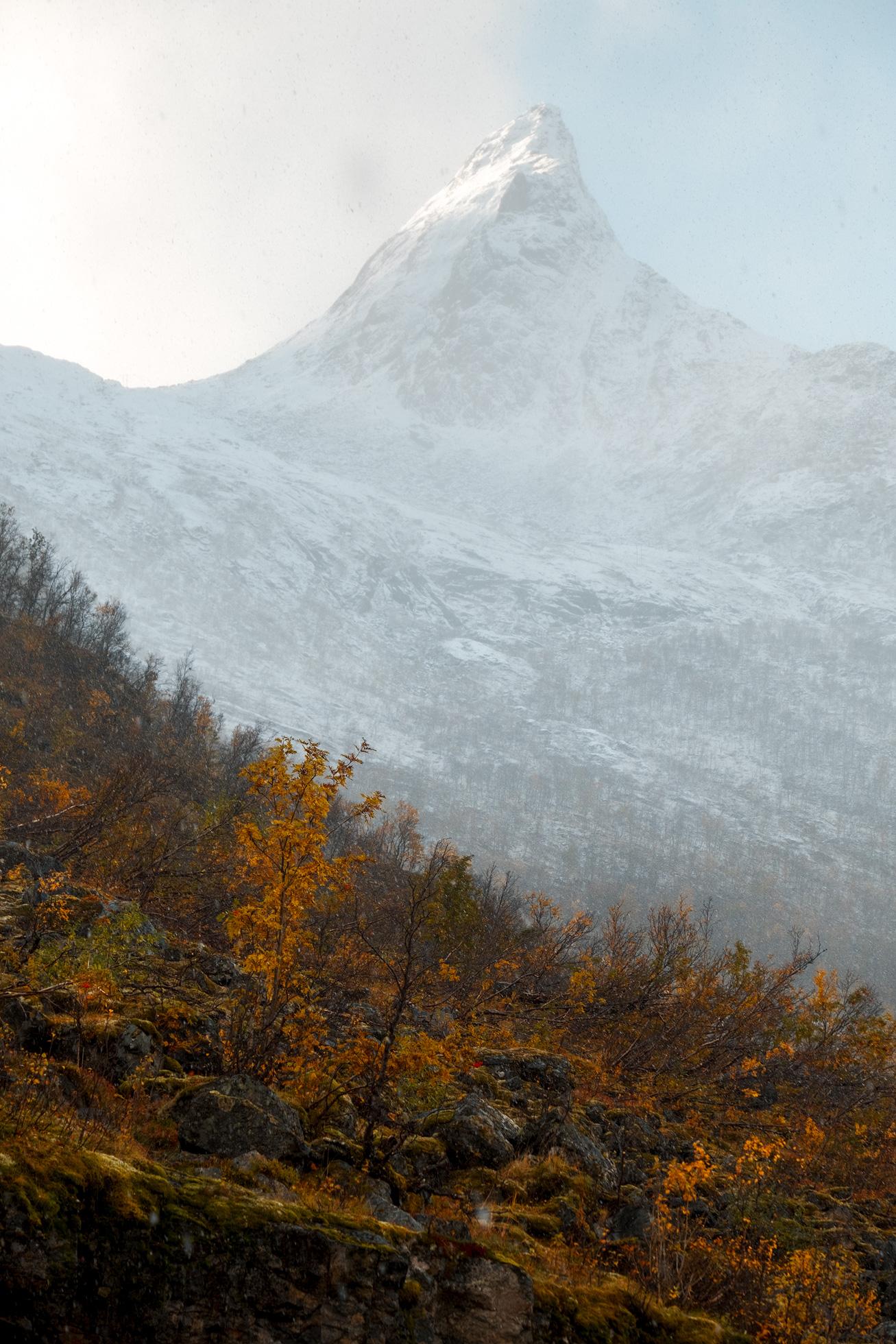 Senja-Autumn-Snow-Vertical.jpg