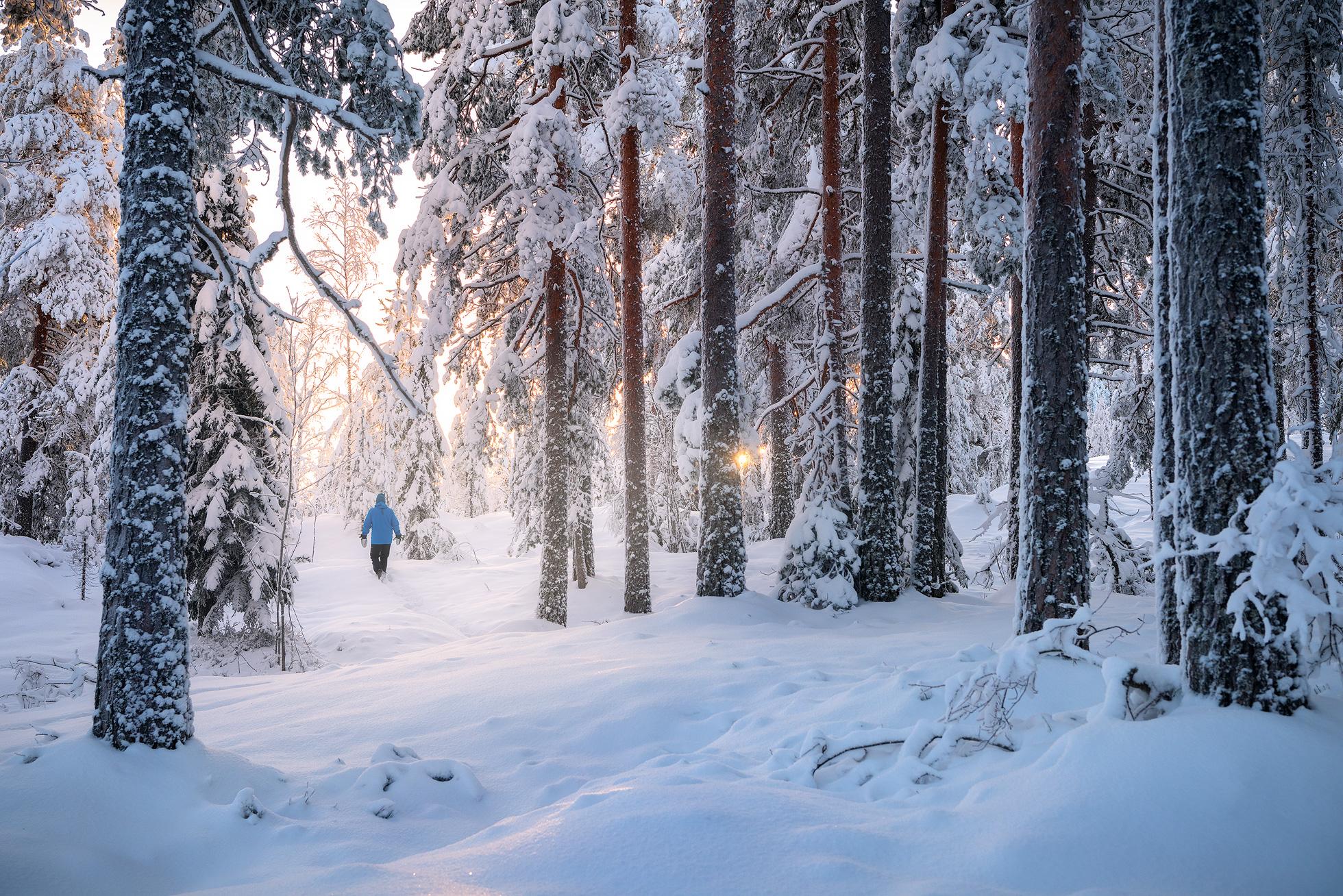 December - Snowshoeing in Winter Wonderland