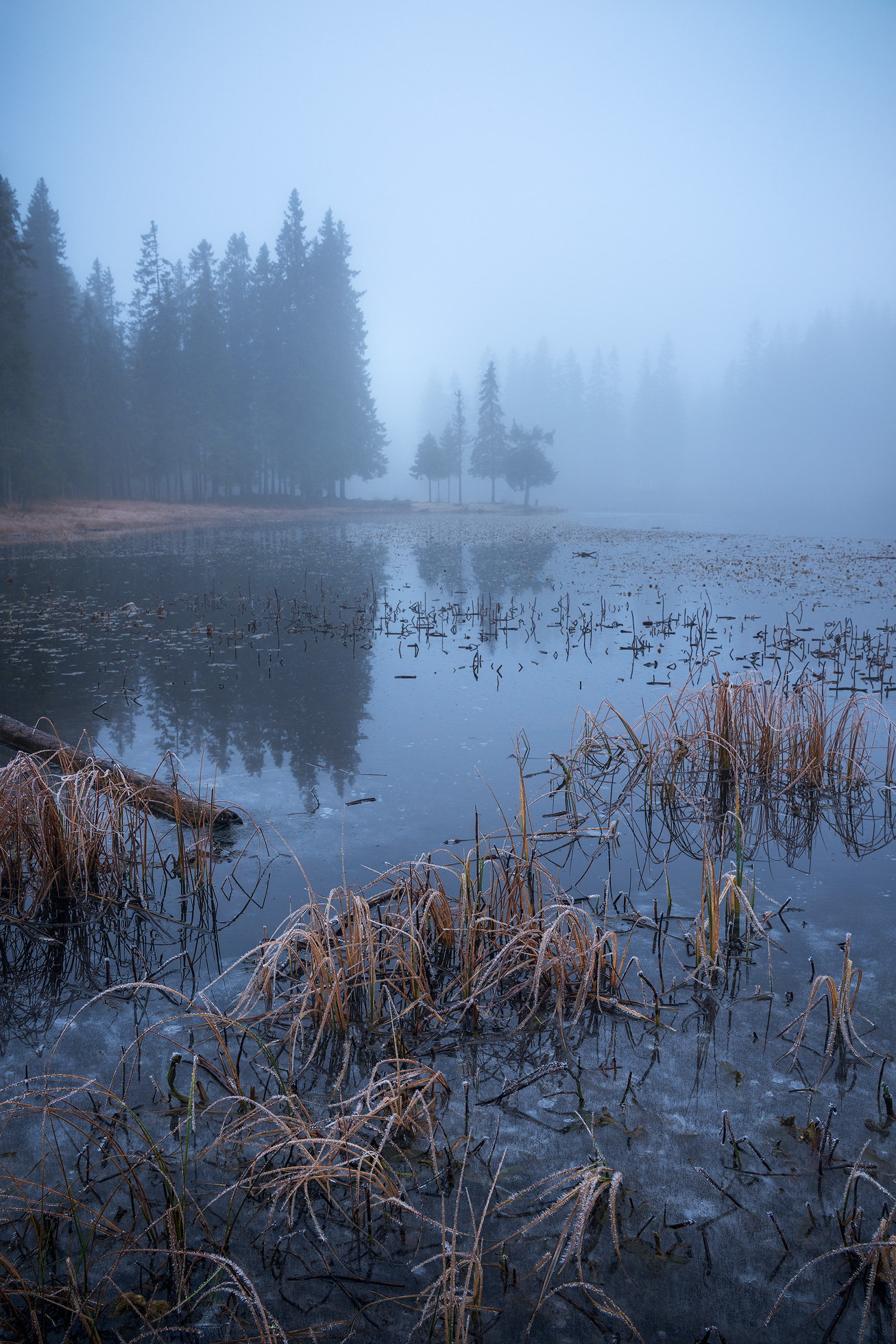 Trondheim-Echo-in-the-Fog.jpg