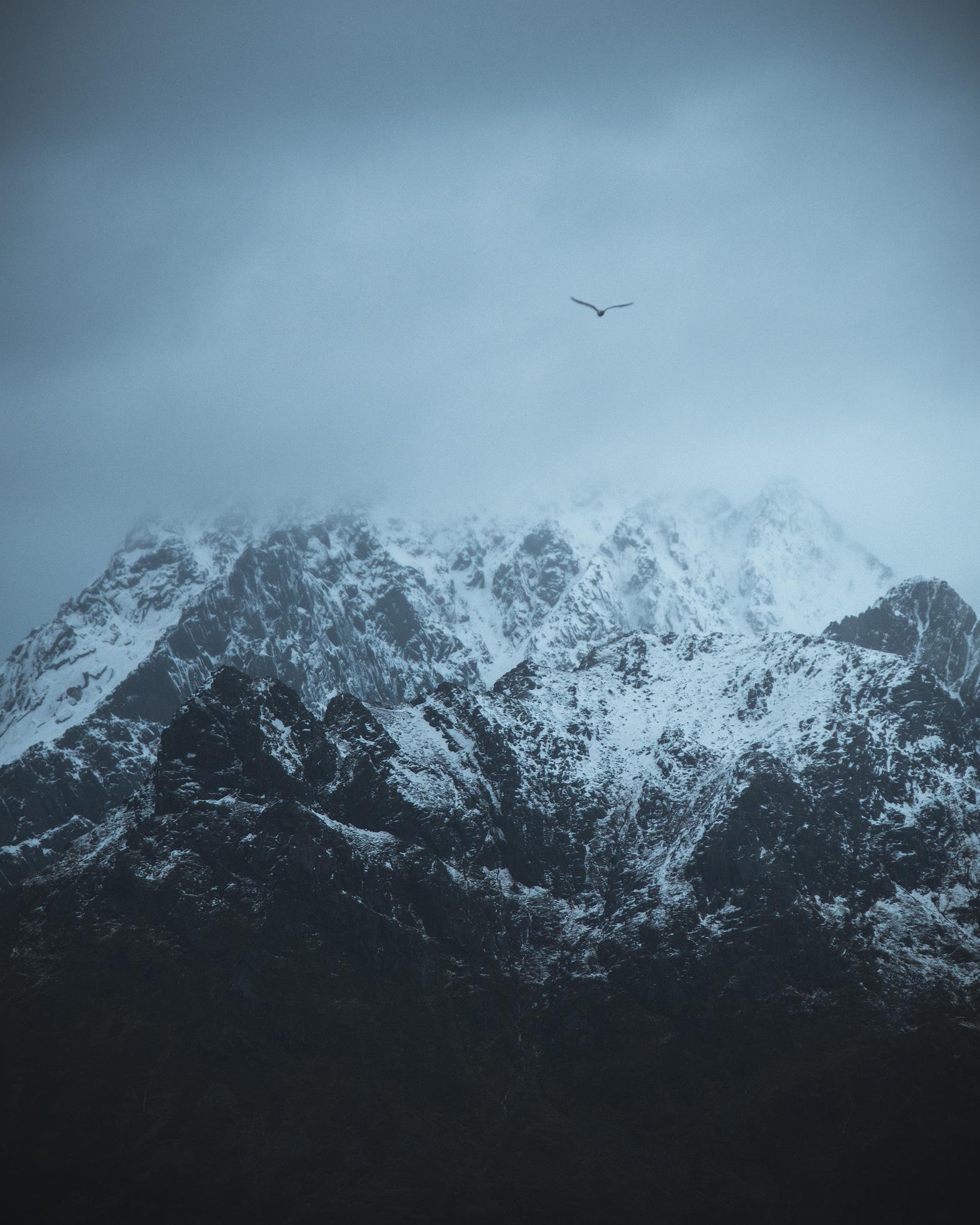 Lofoten-Fly-Away.jpg