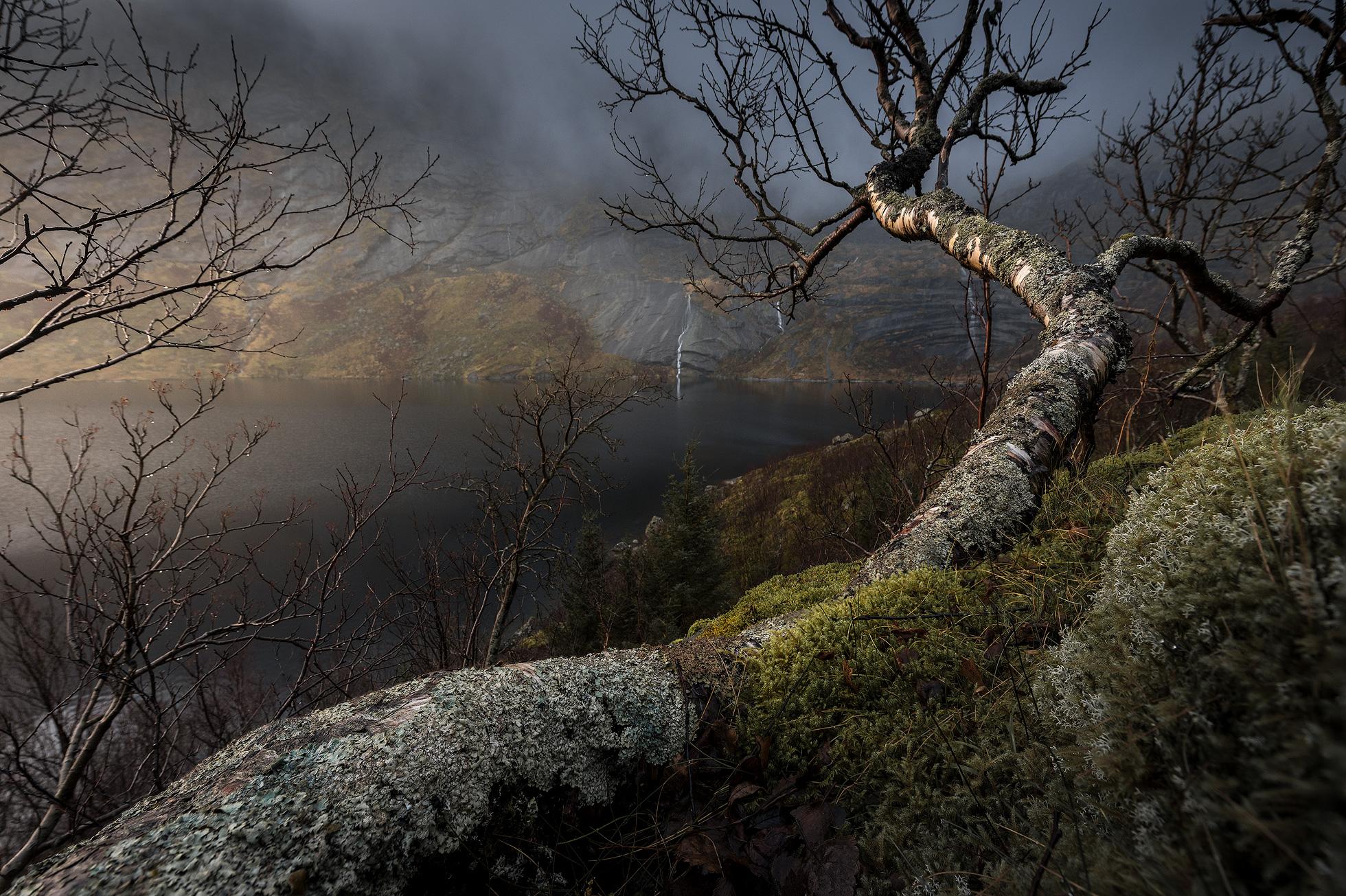 Lofoten-Storvatnet-11-2018-1.jpg