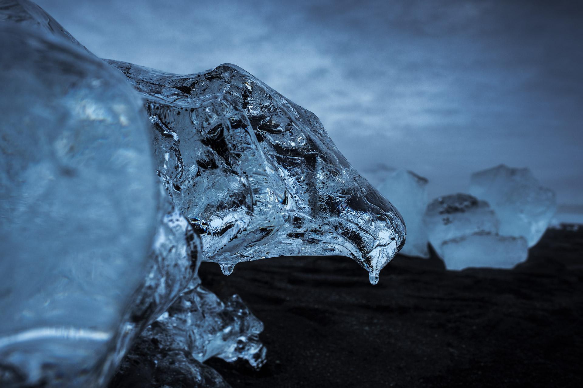 Frozen in Flight, 2017