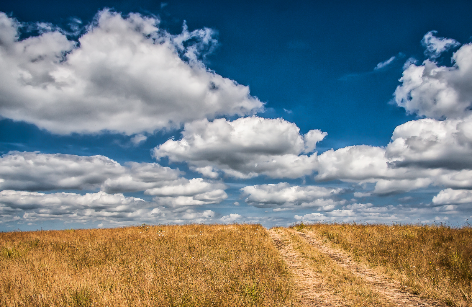 the road to the clouds