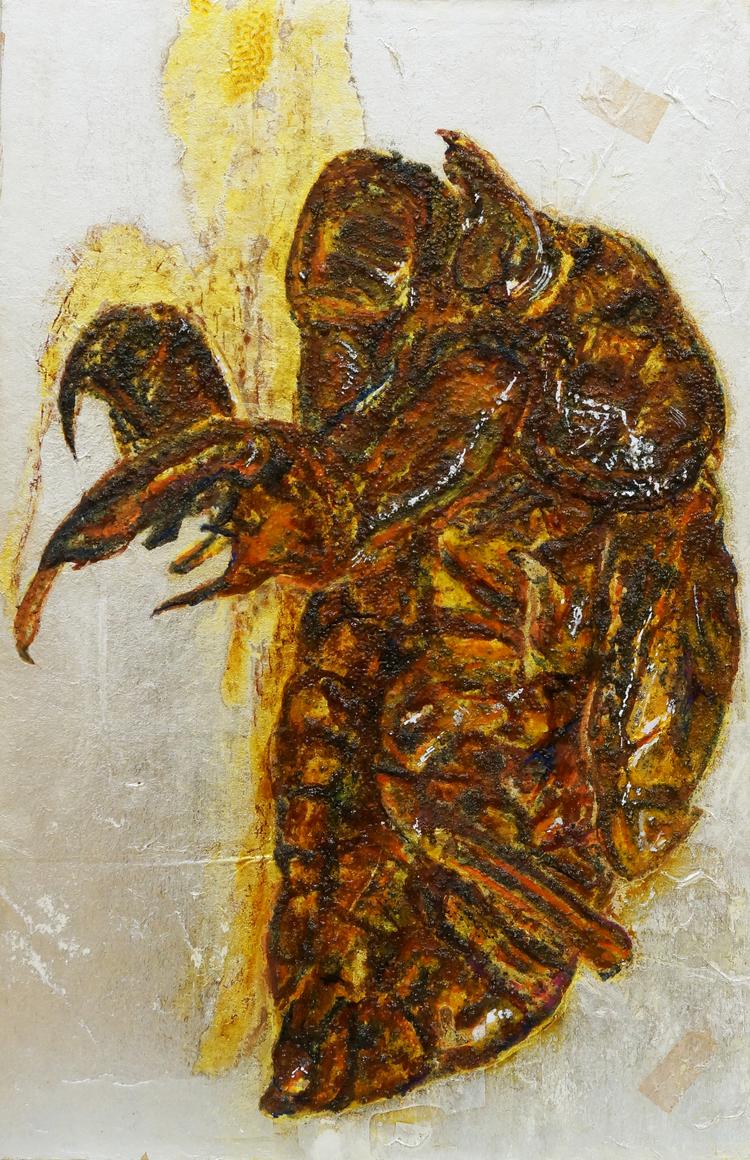 Cicada Husk Study I / セミの抜け殻 I
