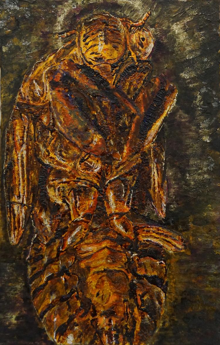 Cicada Husk Study II / セミの抜け殻 II
