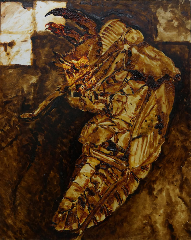 Cicada Husk Study III / セミの抜け殻 III
